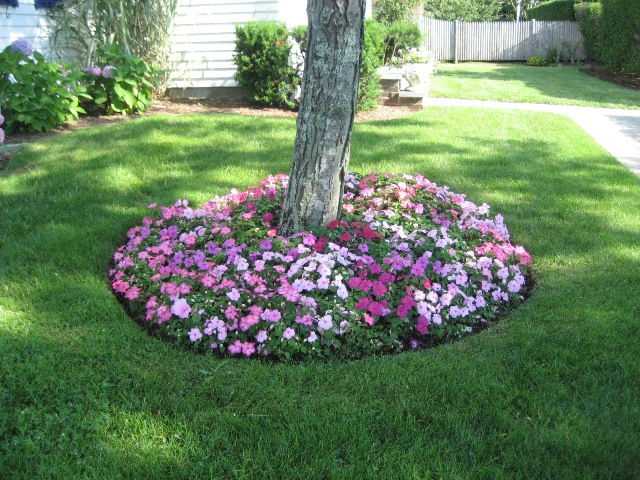 Landscape design jjdelaney - Flower and lawn landscaping ideas ...