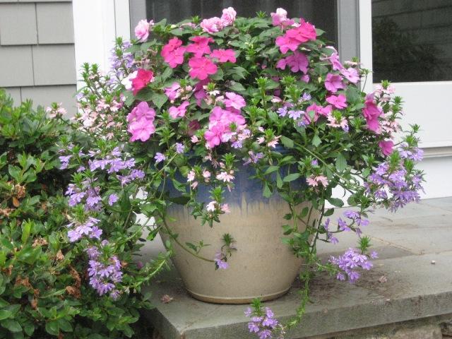 gh-flower-pot